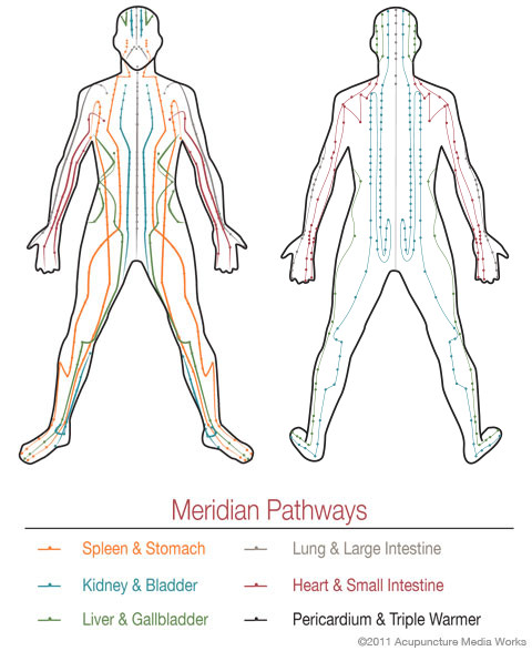 Meridian Pathways that demonstrates how acupuncture works